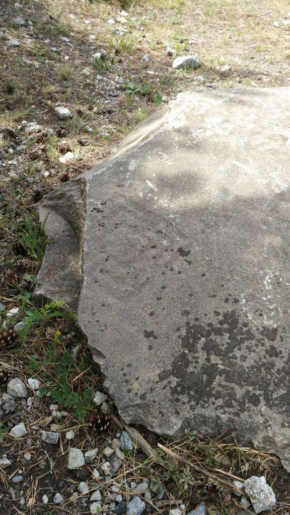 Sito-Megalitico-Incisioni-Rupestri-Parco-Archeologico-de-Lozes-Aussois-Savoia-Rodano-Alpi-Francia-10