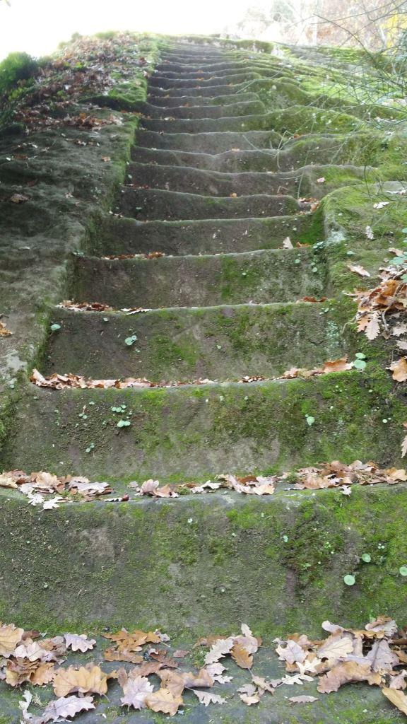 Bomarzo-Piramide-Megalitica-Cart-ruts-ripari-rupestri-Viterbo-Lazio-Italia-36