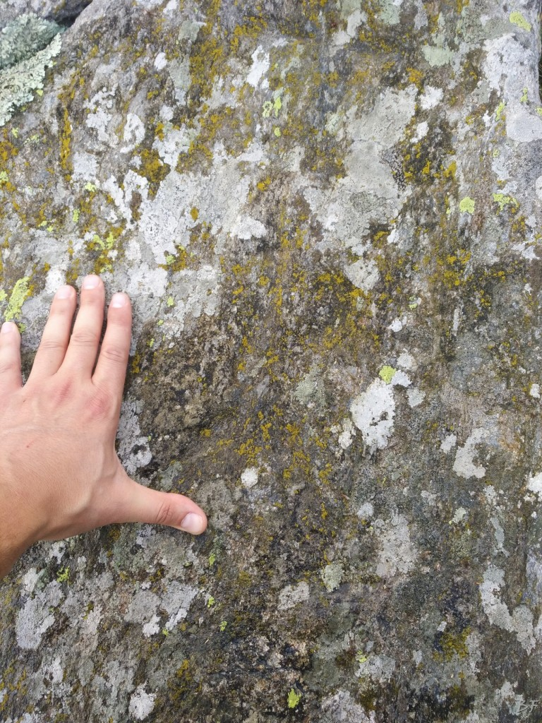 Bric-Lombatera-Cuneo-Altare-Coppelle-Cromlech-2