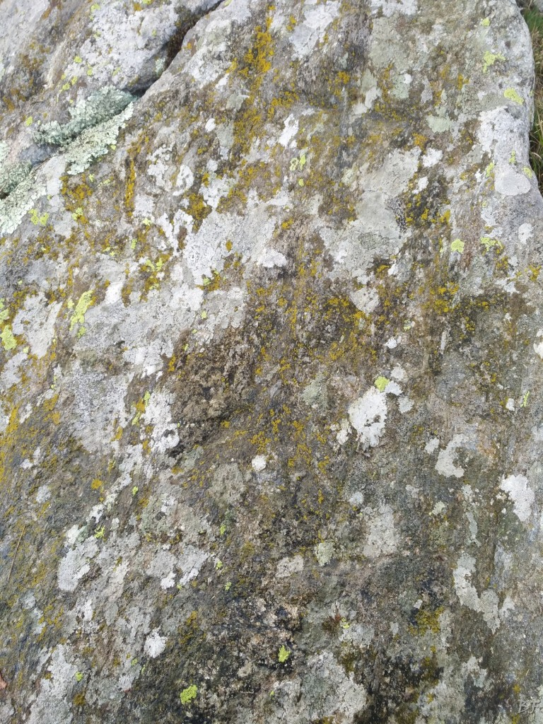 Bric-Lombatera-Cuneo-Altare-Coppelle-Cromlech-28