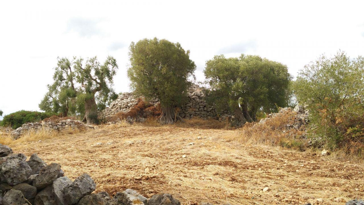 Specchia-Castelluzzo-Torre-Megalitica-Ciclopica-Ceglie-Messapica-Brindisi-Puglia-Italia-2