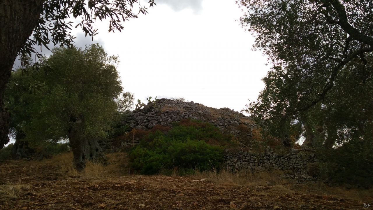 Specchia-Castelluzzo-Torre-Megalitica-Ciclopica-Ceglie-Messapica-Brindisi-Puglia-Italia-6