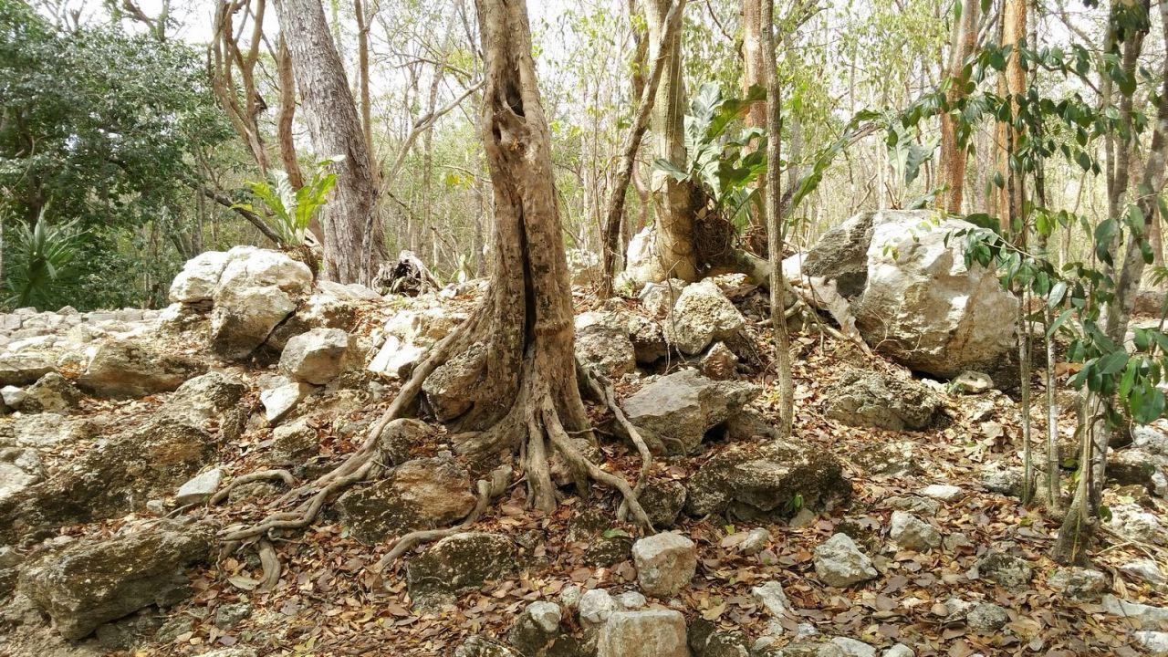 Sito-Megalitico-Maya-Chichen-Itza-Yucatan-Messico-25