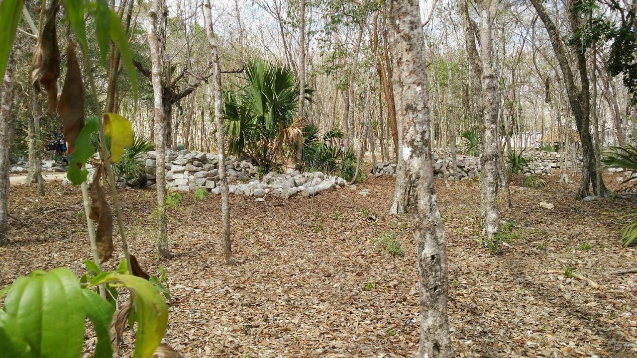 Sito-Megalitico-Maya-Chichen-Itza-Yucatan-Messico-34