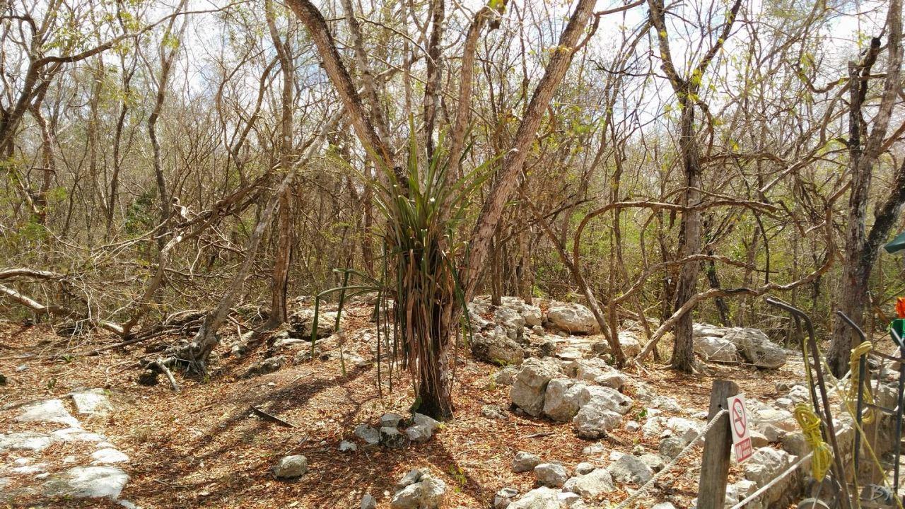 Sito-Megalitico-Maya-Chichen-Itza-Yucatan-Messico-74