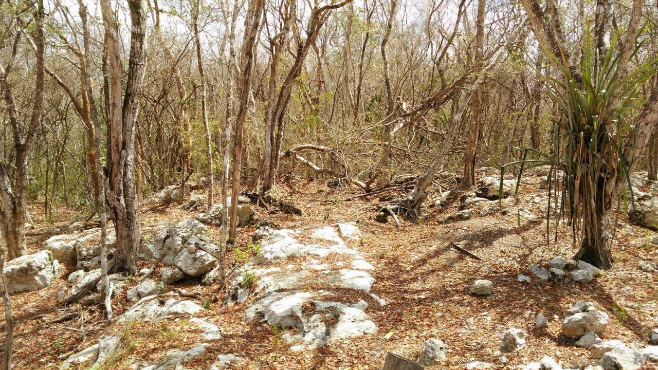Sito-Megalitico-Maya-Chichen-Itza-Yucatan-Messico-75