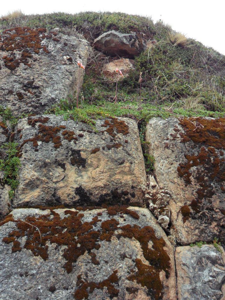 Chinchero-Mura-Poligonali-Piramide-Urubamba-Peru-51