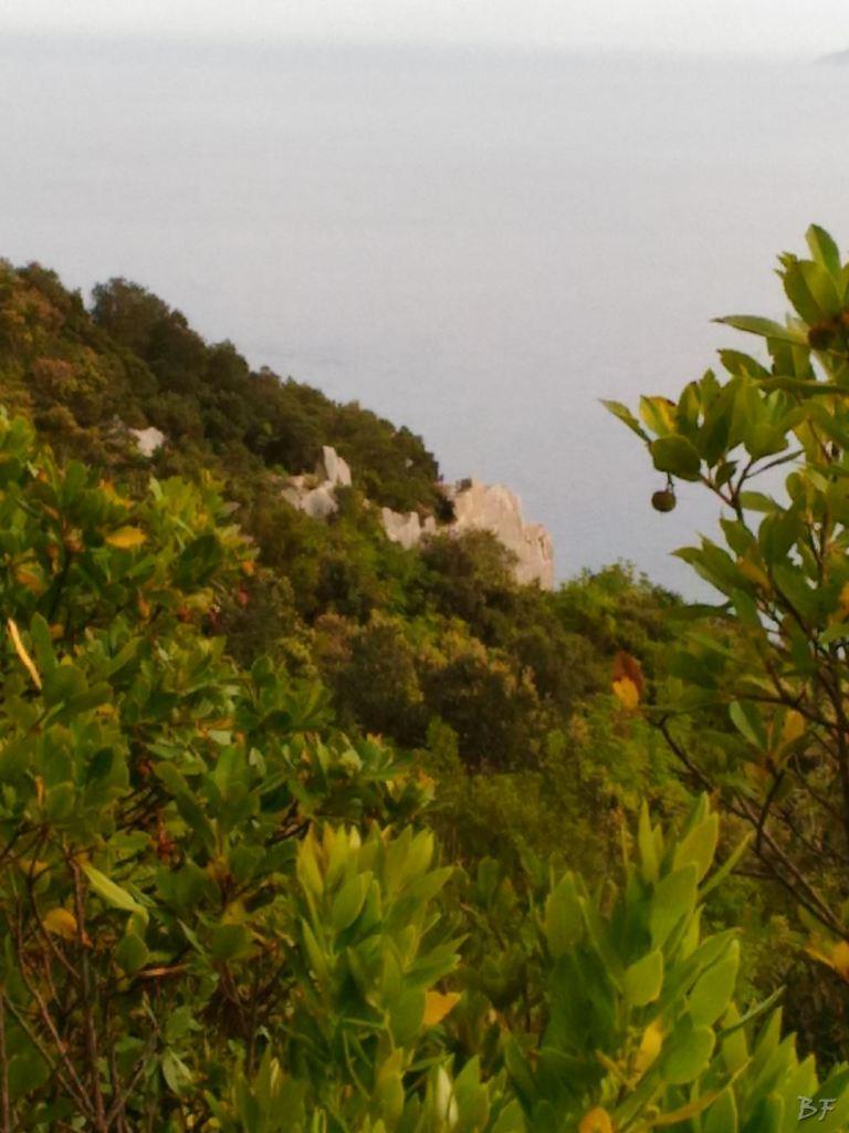 Circeii-Mura-Megalitiche-Poligonali-Latina-Lazio-Italia-16