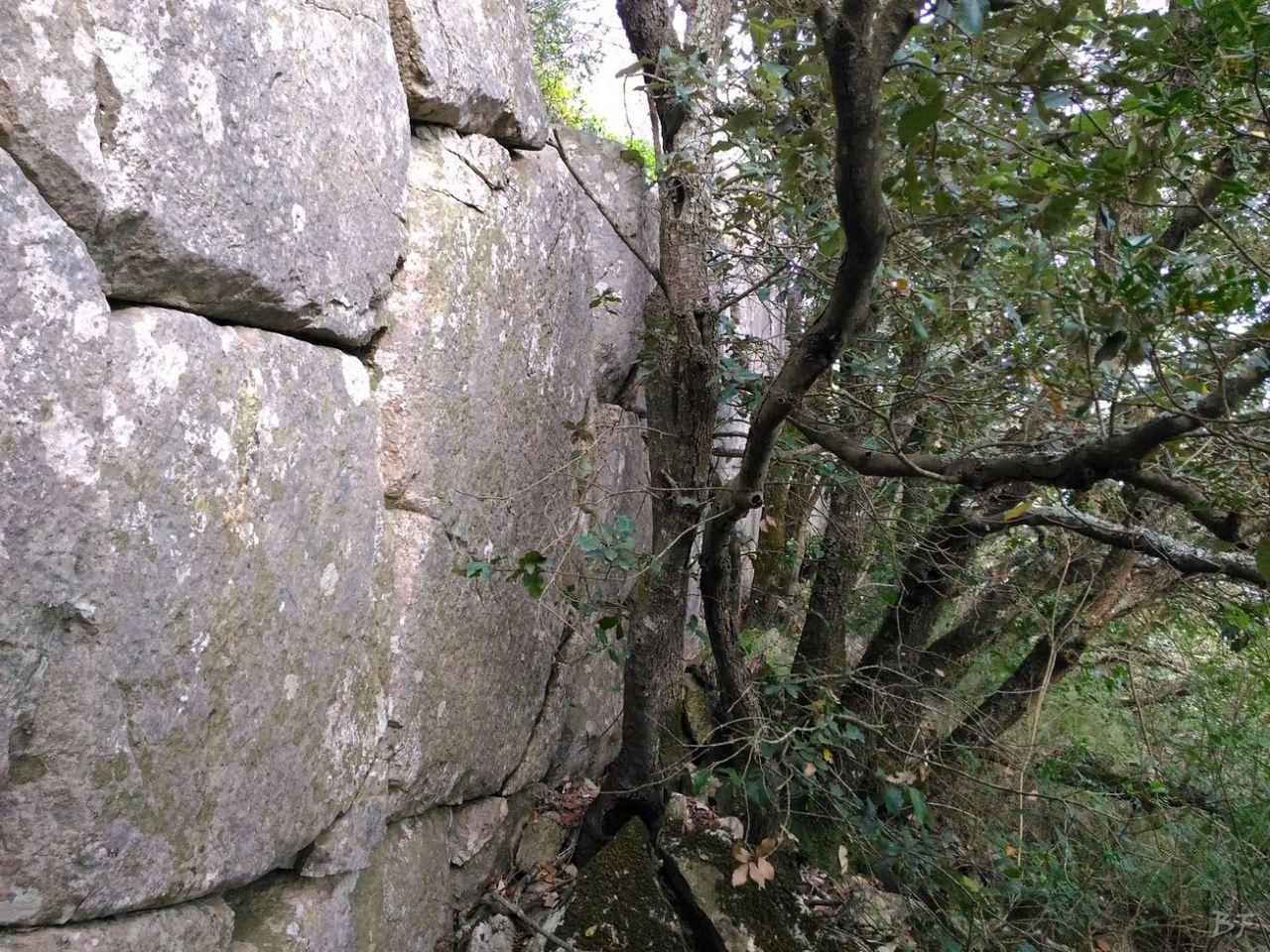Circeii-Mura-Megalitiche-Poligonali-Latina-Lazio-Italia-24