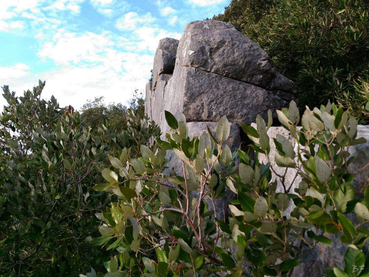 Circeii-Mura-Megalitiche-Poligonali-Latina-Lazio-Italia-7