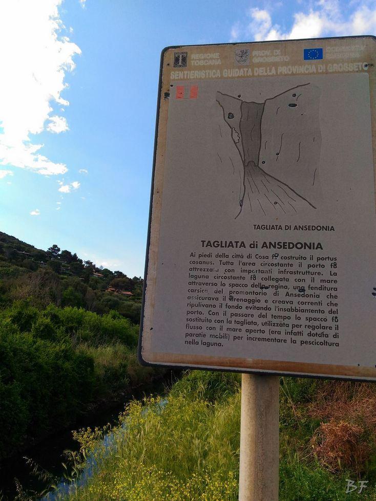 Cosa-Mura-Megalitiche-Ansedonia-Grosseto-Toscana-Italia-103