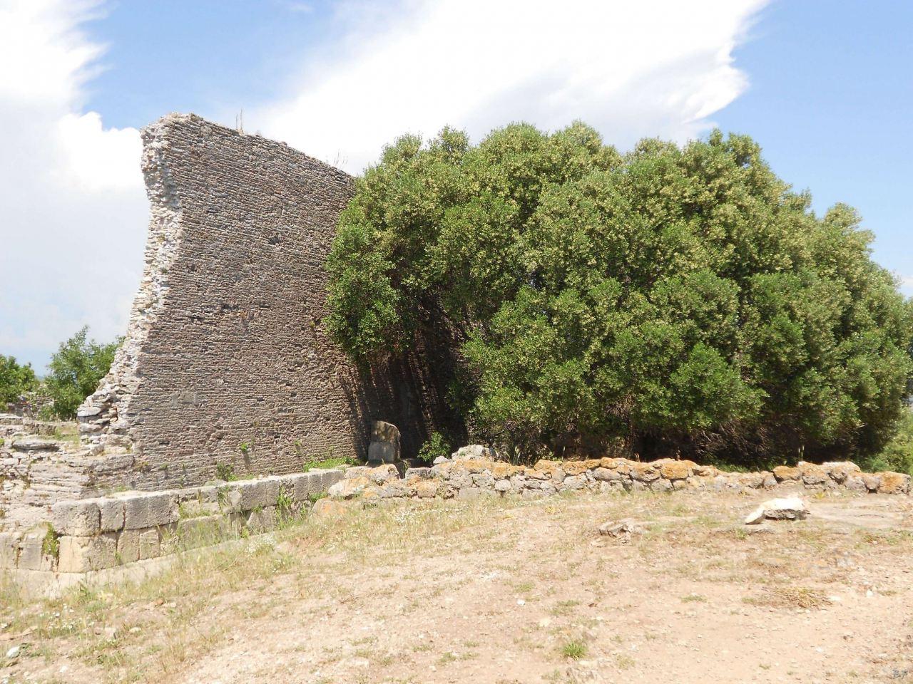 Cosa-Mura-Megalitiche-Ansedonia-Grosseto-Toscana-Italia-37