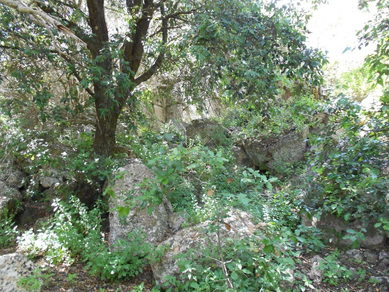 Cosa-Mura-Megalitiche-Ansedonia-Grosseto-Toscana-Italia-41