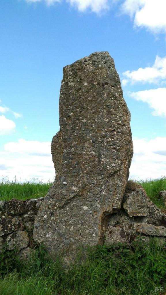 Menhir-Danthine-Durbuy-Vallonia-Belgio-1