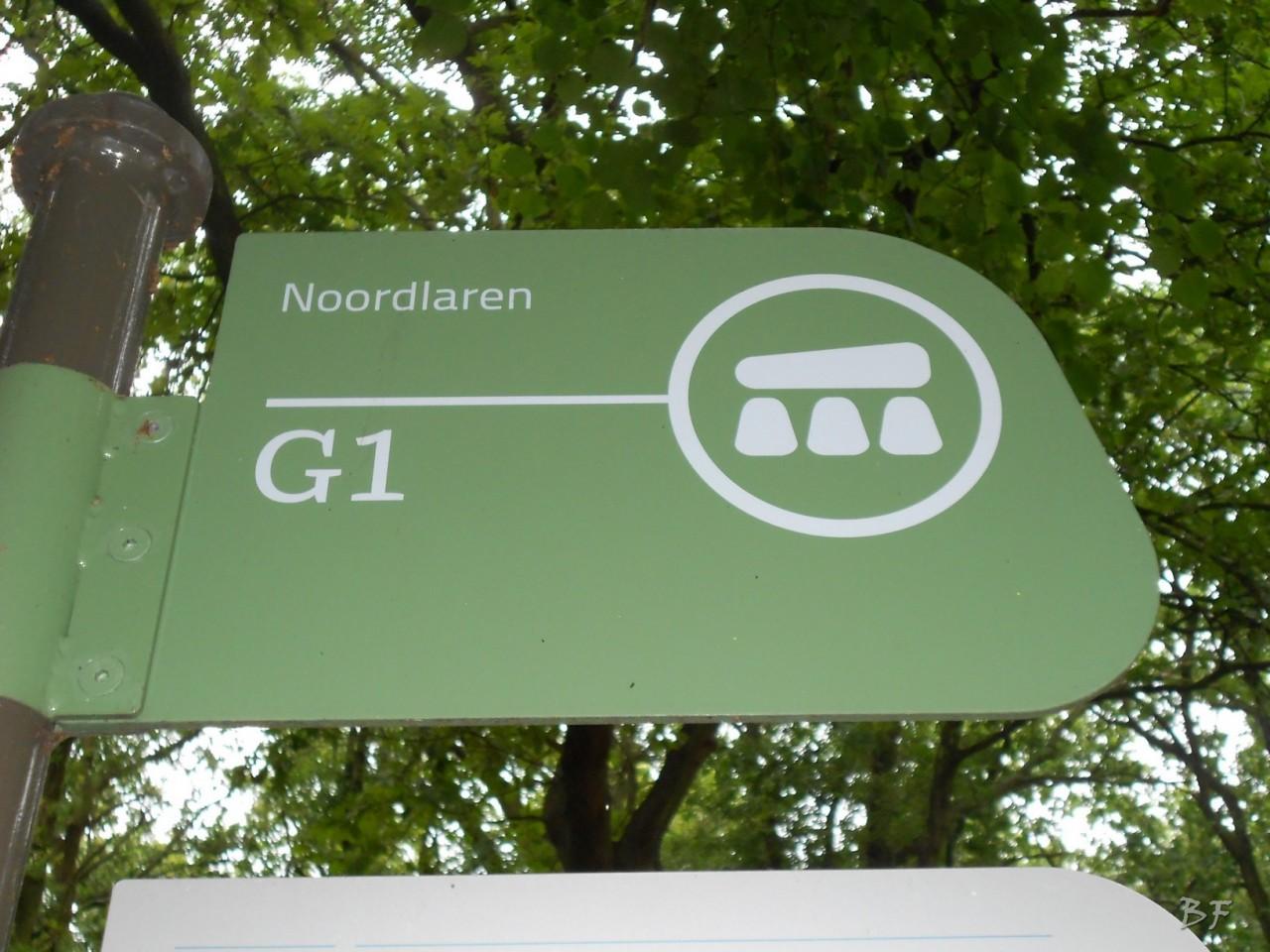 Hunebedden-Dolmen-Megaliti-Groeningen-Drenthe-Paesi-Bassi-10