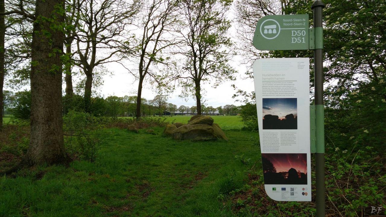 Hunebedden-Dolmen-Megaliti-Groeningen-Drenthe-Paesi-Bassi-102