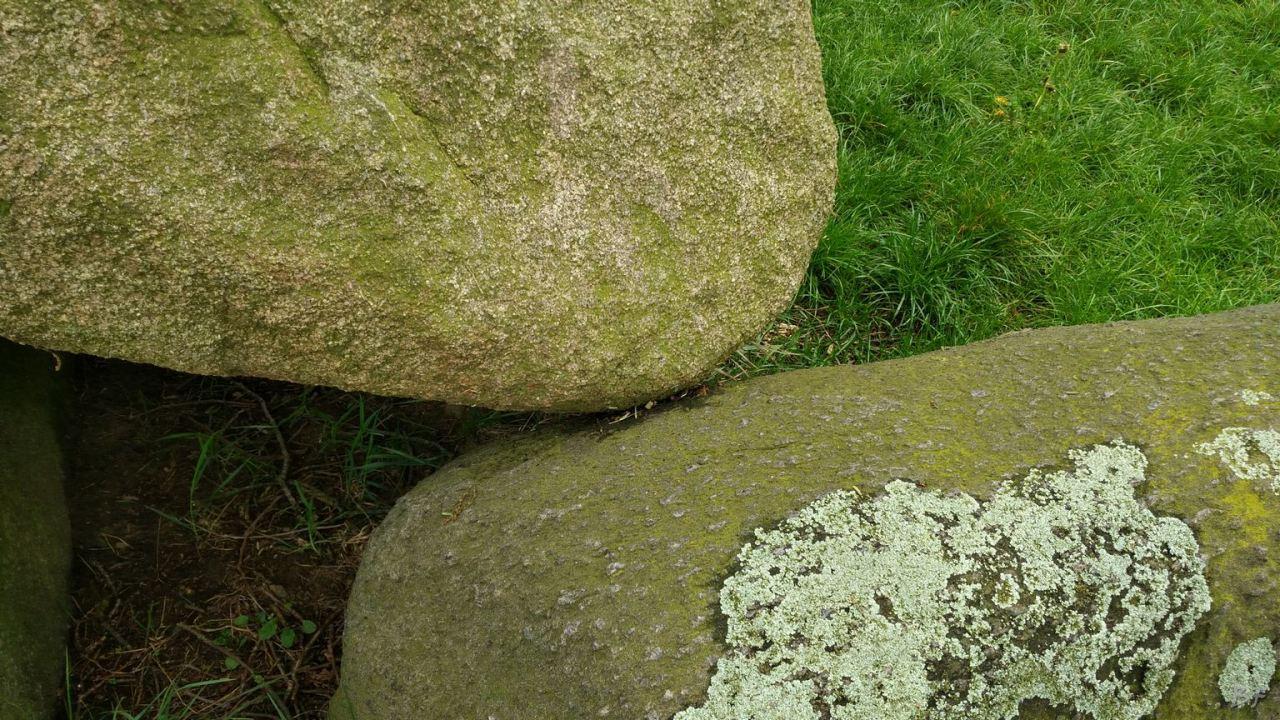 Hunebedden-Dolmen-Megaliti-Groeningen-Drenthe-Paesi-Bassi-105