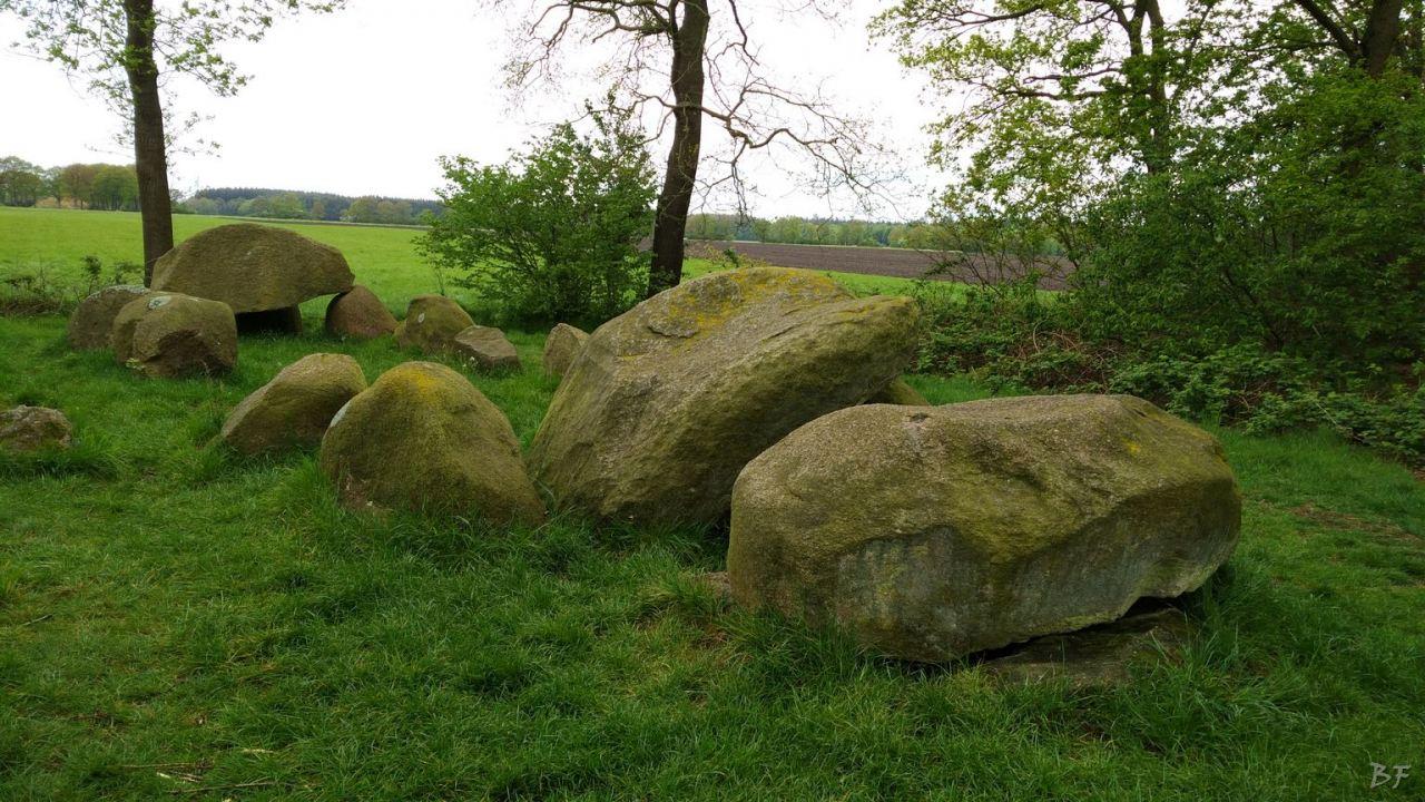Hunebedden-Dolmen-Megaliti-Groeningen-Drenthe-Paesi-Bassi-106