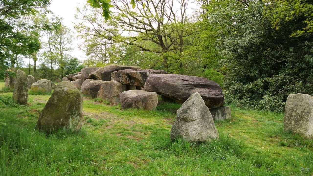 Hunebedden-Dolmen-Megaliti-Groeningen-Drenthe-Paesi-Bassi-107