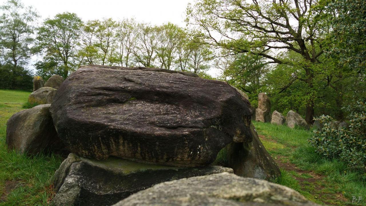 Hunebedden-Dolmen-Megaliti-Groeningen-Drenthe-Paesi-Bassi-108