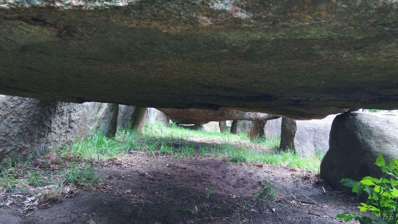 Hunebedden-Dolmen-Megaliti-Groeningen-Drenthe-Paesi-Bassi-109
