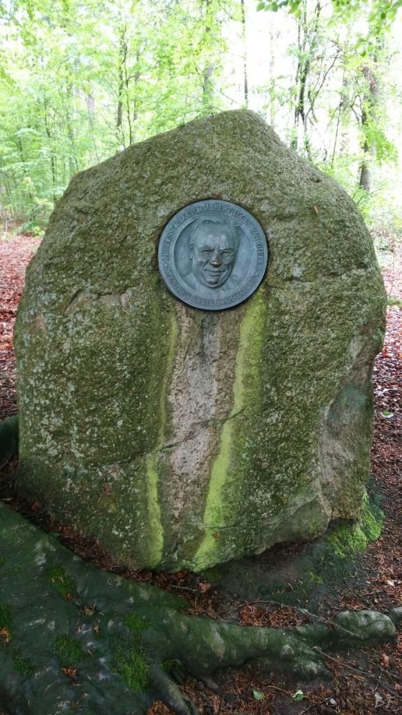 Hunebedden-Dolmen-Megaliti-Groeningen-Drenthe-Paesi-Bassi-112