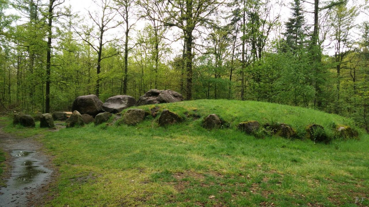 Hunebedden-Dolmen-Megaliti-Groeningen-Drenthe-Paesi-Bassi-114