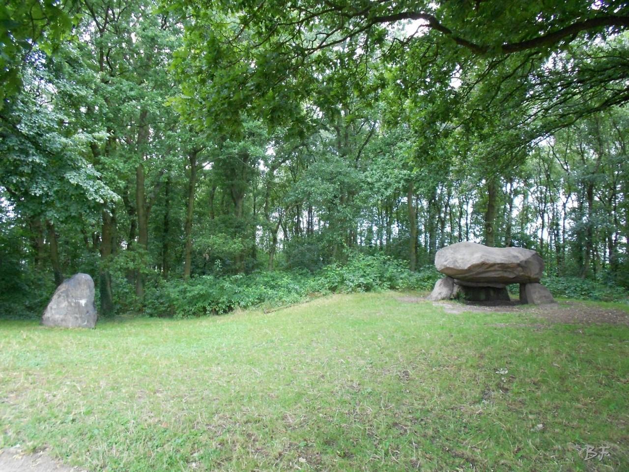 Hunebedden-Dolmen-Megaliti-Groeningen-Drenthe-Paesi-Bassi-16