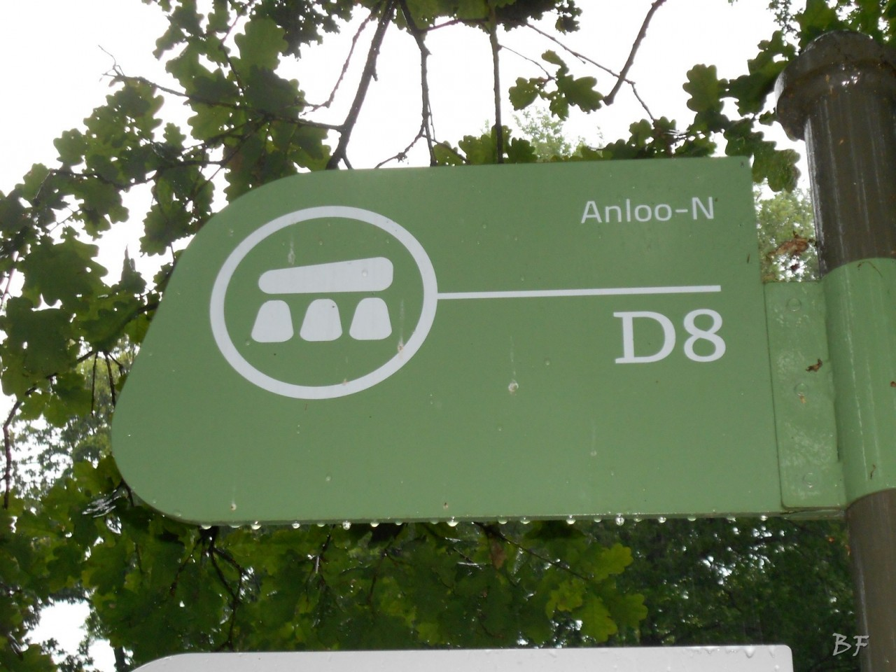 Hunebedden-Dolmen-Megaliti-Groeningen-Drenthe-Paesi-Bassi-17