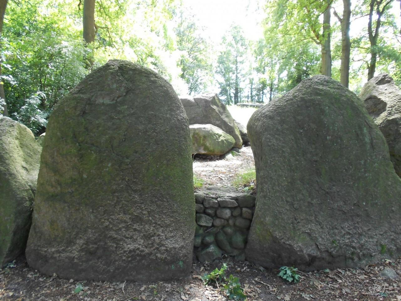 Hunebedden-Dolmen-Megaliti-Groeningen-Drenthe-Paesi-Bassi-2