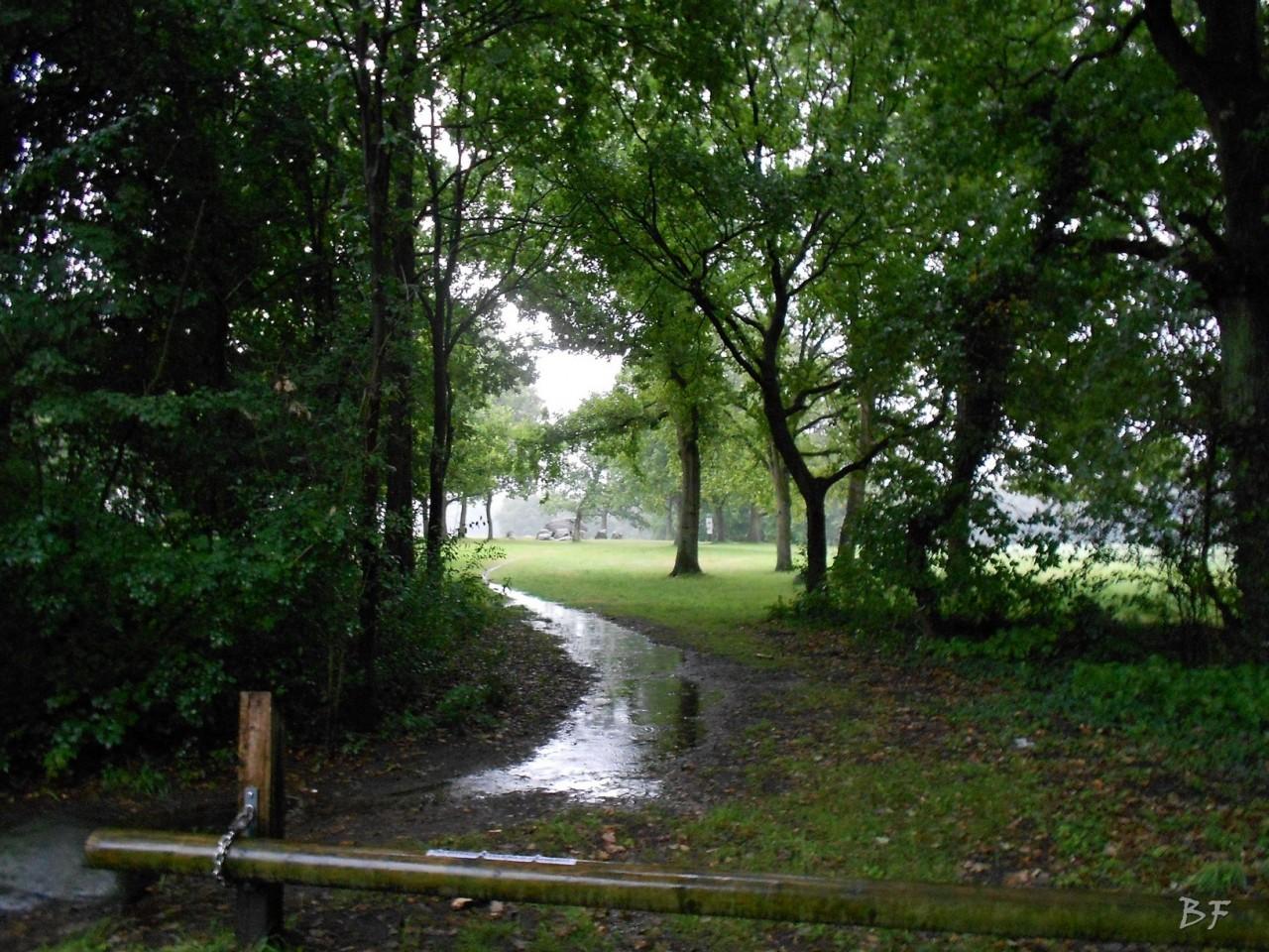 Hunebedden-Dolmen-Megaliti-Groeningen-Drenthe-Paesi-Bassi-31