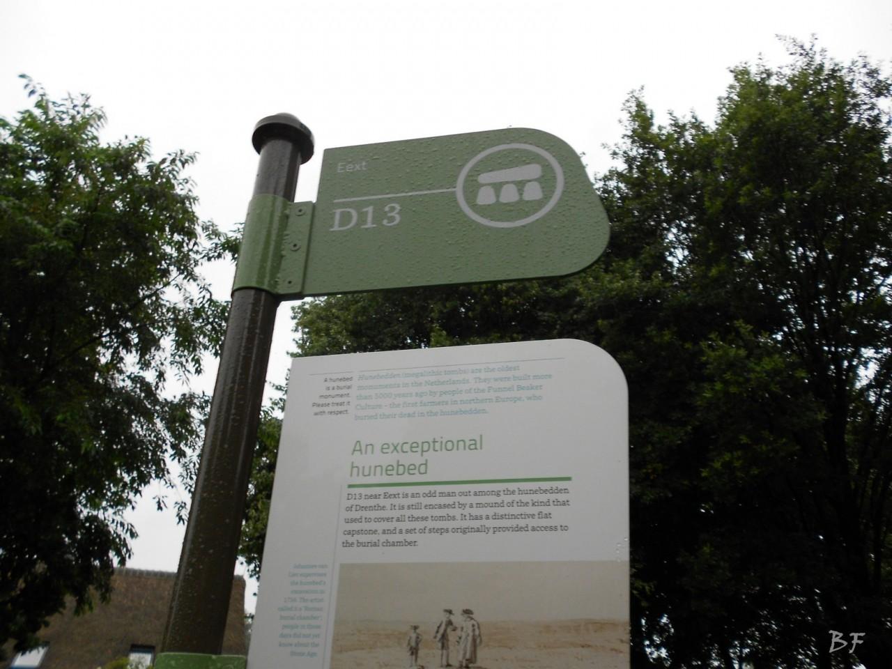 Hunebedden-Dolmen-Megaliti-Groeningen-Drenthe-Paesi-Bassi-32
