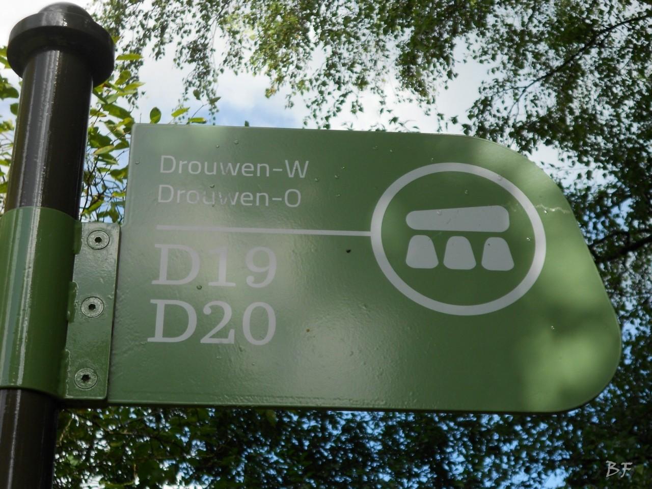 Hunebedden-Dolmen-Megaliti-Groeningen-Drenthe-Paesi-Bassi-38