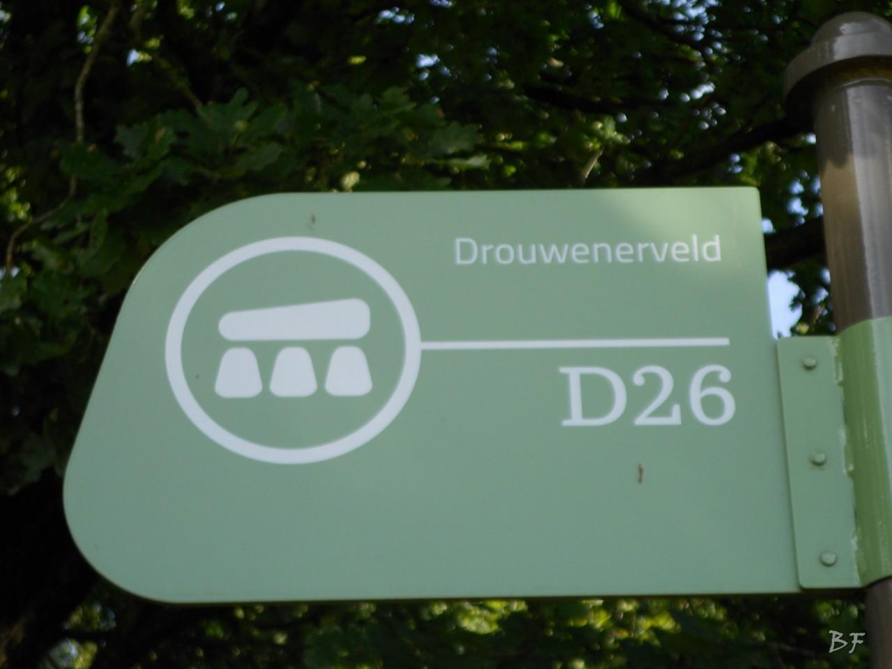 Hunebedden-Dolmen-Megaliti-Groeningen-Drenthe-Paesi-Bassi-46