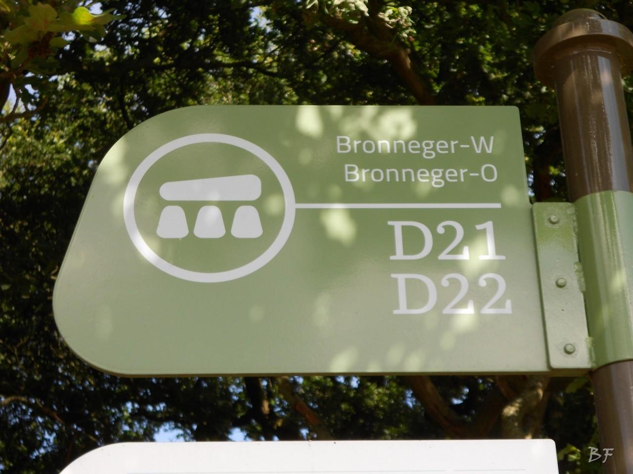 Hunebedden-Dolmen-Megaliti-Groeningen-Drenthe-Paesi-Bassi-51