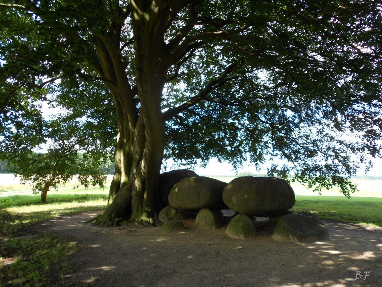 Hunebedden-Dolmen-Megaliti-Groeningen-Drenthe-Paesi-Bassi-52
