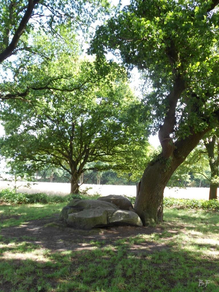 Hunebedden-Dolmen-Megaliti-Groeningen-Drenthe-Paesi-Bassi-53