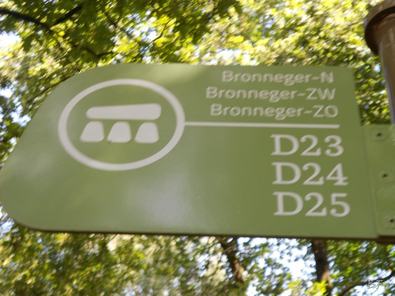 Hunebedden-Dolmen-Megaliti-Groeningen-Drenthe-Paesi-Bassi-56