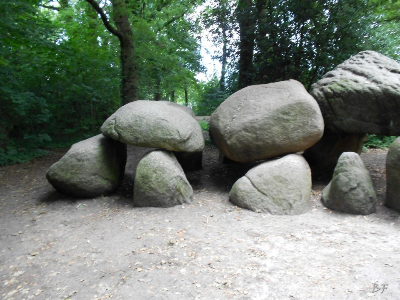Hunebedden-Dolmen-Megaliti-Groeningen-Drenthe-Paesi-Bassi-68