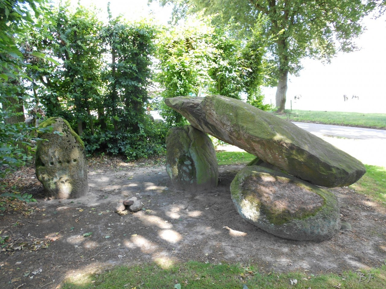 Hunebedden-Dolmen-Megaliti-Groeningen-Drenthe-Paesi-Bassi-7