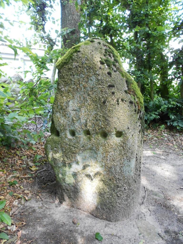 Hunebedden-Dolmen-Megaliti-Groeningen-Drenthe-Paesi-Bassi-8