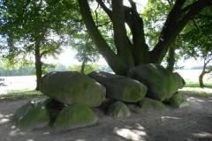 Hunebedden-Dolmen-Megaliti-Groeningen-Drenthe-Paesi-Bassi-55