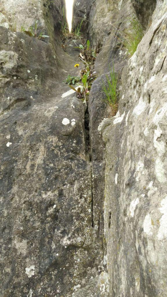 Externsteine-Insediamento-Rupestre-Megaliti-Nord-Renania-Vestfalia-Germania-34