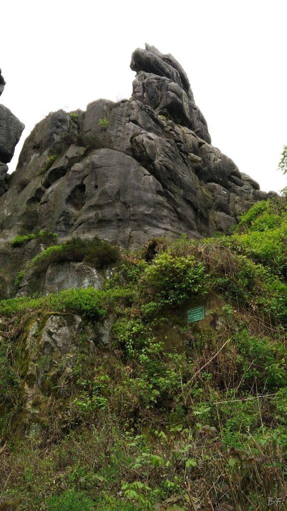 Externsteine-Insediamento-Rupestre-Megaliti-Nord-Renania-Vestfalia-Germania-39