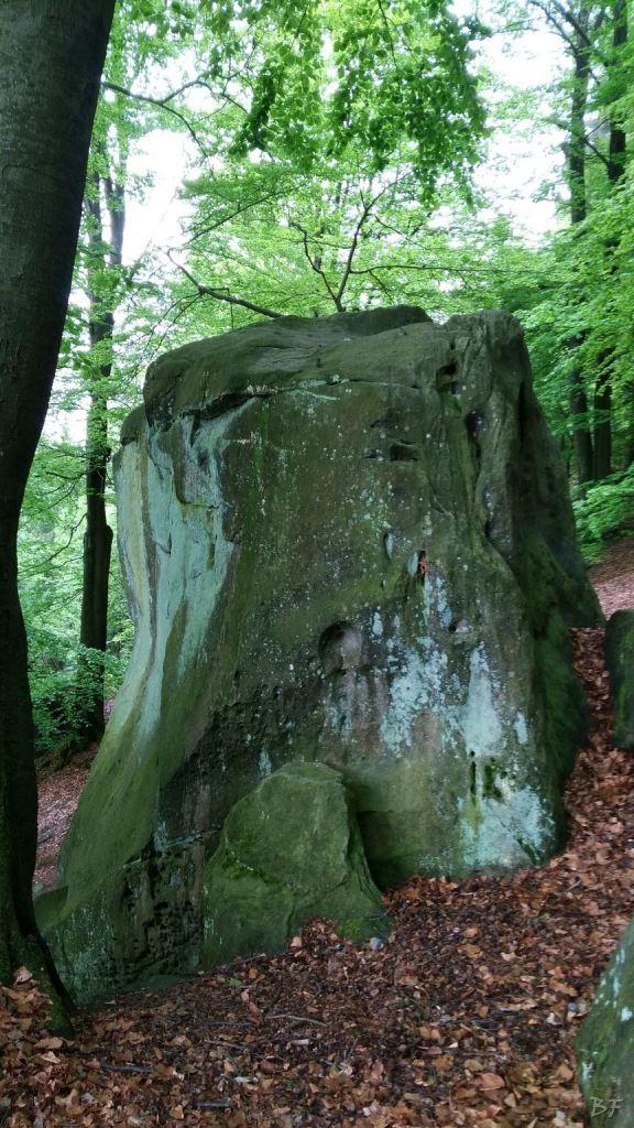 Externsteine-Insediamento-Rupestre-Megaliti-Nord-Renania-Vestfalia-Germania-41