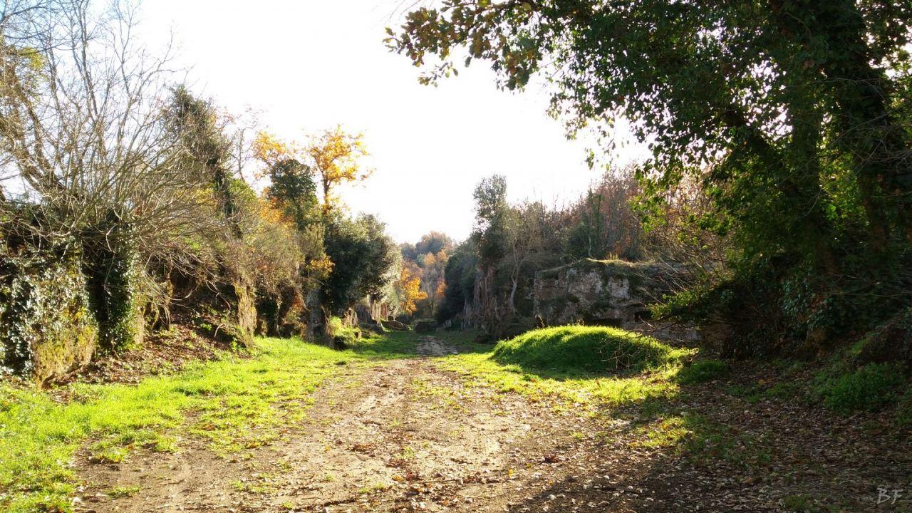 Falerii-Novi-Megaliti-Ipogei-Abitazioni-Rupestri-Viterbo-Lazio-Italia-21