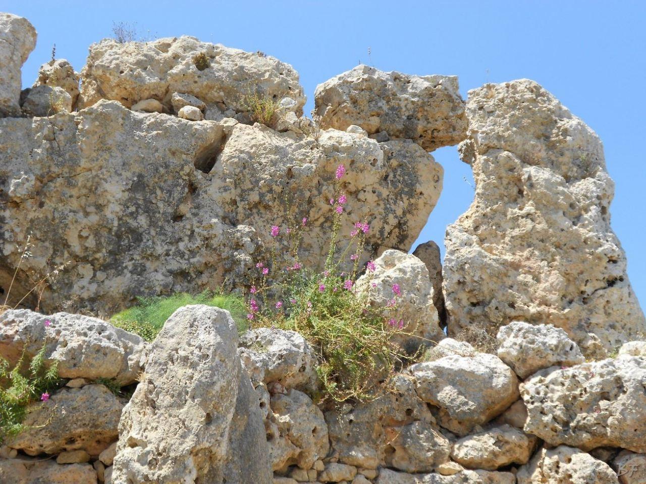 Ggantija-Tempio-Megalitico-Gozo-Malta-4