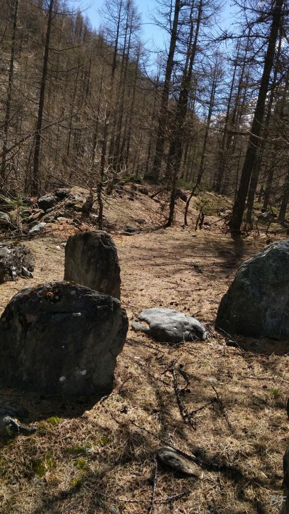 Giudigiai-Torino-Menhir-Tumulo-Dolmen-28