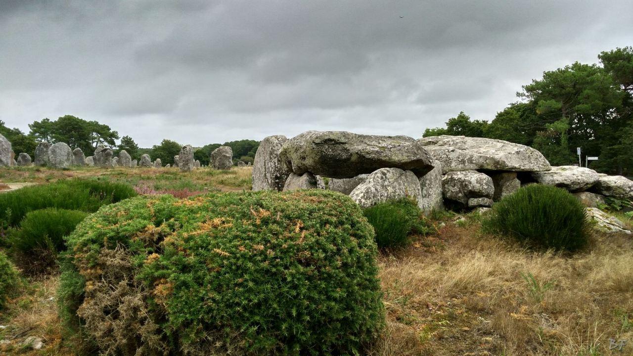 Alignements-de-Kermario-Menhir-Bretagna-Francia-6