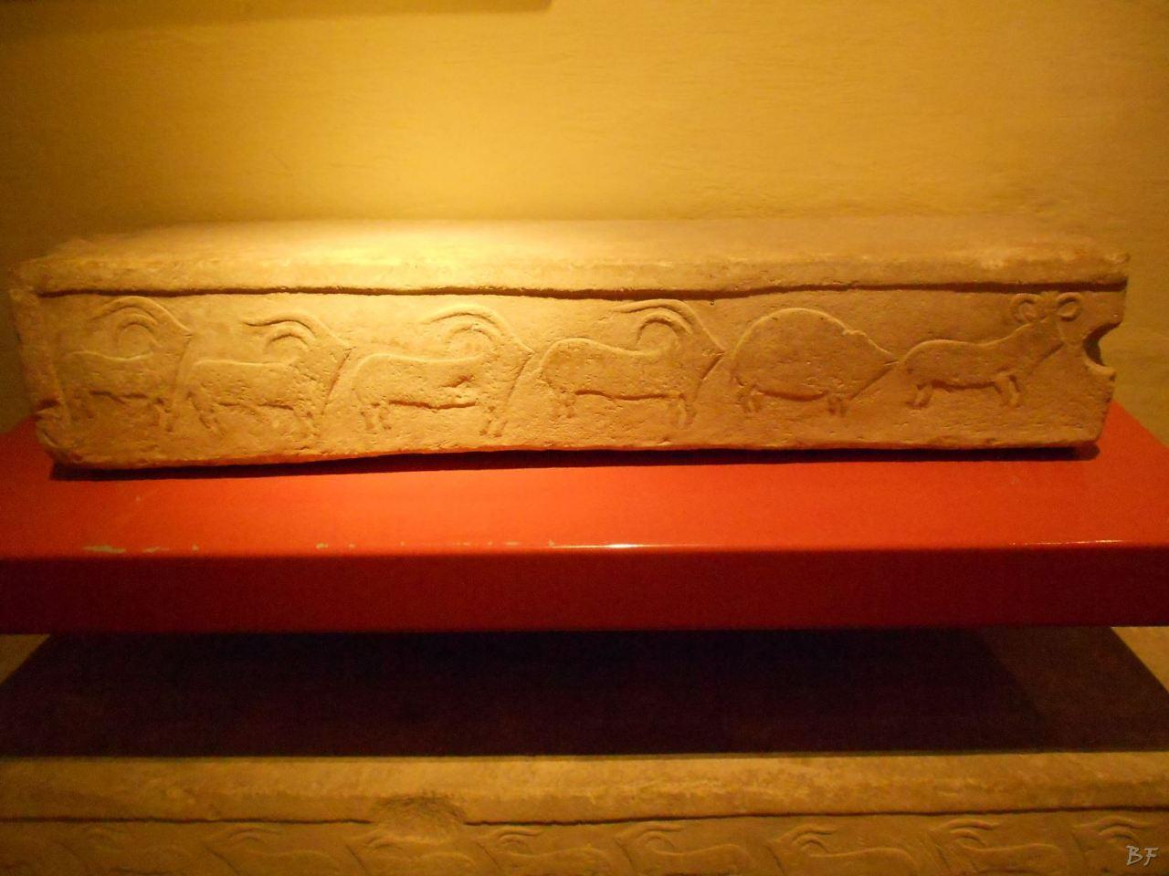 La-Valletta-Museo-Archeologia-Malta-37
